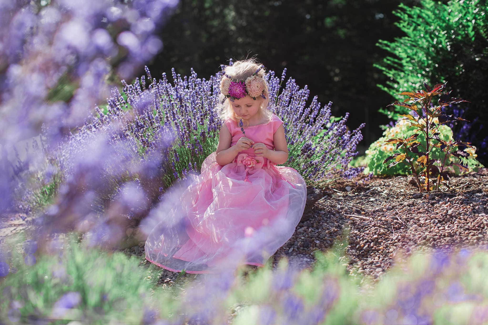 Girl holding lavender flower posing for portrait session